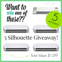 Blogiversary + 5 Silhouette Giveaway