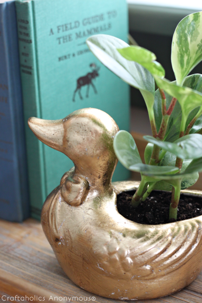 DIY gold duck planter. Awesome makeover! She shares 3 different techniques for gold gilding.