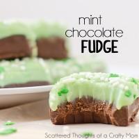 Mint-chocolate-fudge