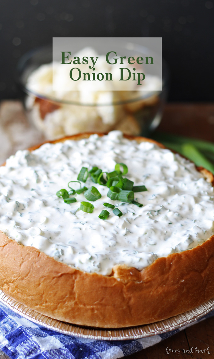 Easy Green Onion Dip