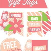 DIY-Spring-Gift-Tags-by-Paperelli-for-Craftaholics-Anonymous