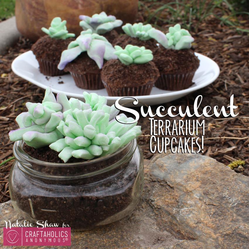 Craftaholics Anonymous 174 Succulent Terrarium Cupcakes