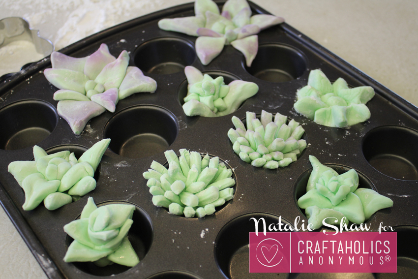 edible terrariums succulents marshmallow fondant cupcake dirt cups cake wedding decor mason jar dessert craftaholics anon (28)