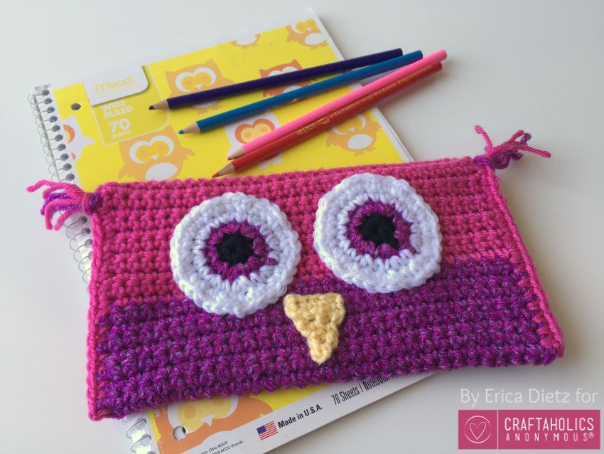 pink purple owl pencil bag