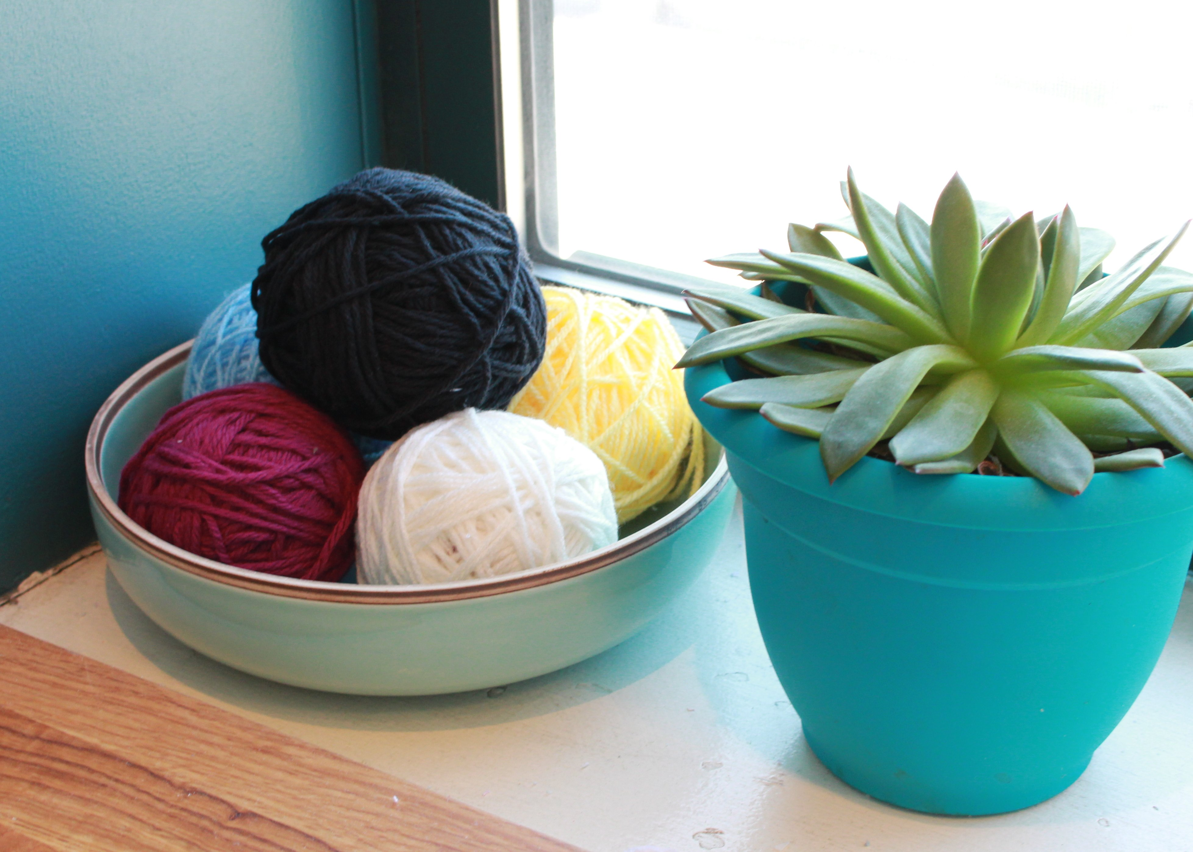 Yarn and Plant
