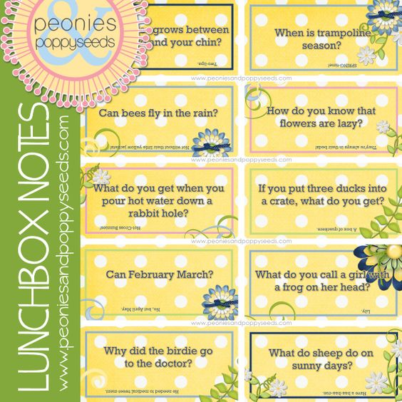 lunch box notes 27