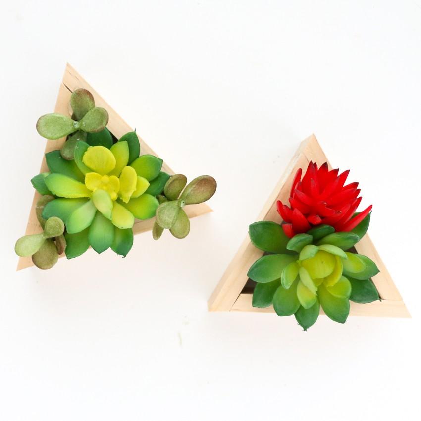 Simple Wooden Tree Succulent Ornaments